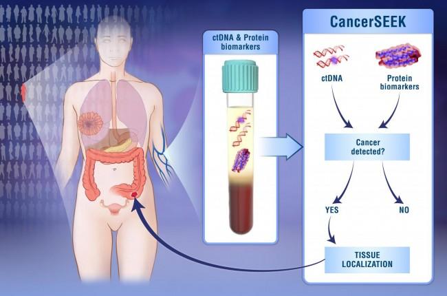 혈액 안에 돌아다니는 아주 희박한 암 유전자와 단백질을 검출해 암을 조기진단하는 기술 경쟁이 뜨겁다. - 존스홉킨스 의대 제공